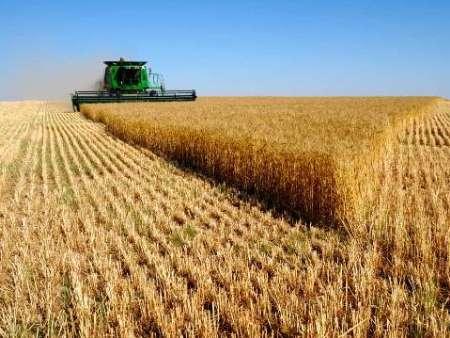 گردهمایی 120 نخبه علمی در نوآوردگاه کشاورزی جنوب کرمان