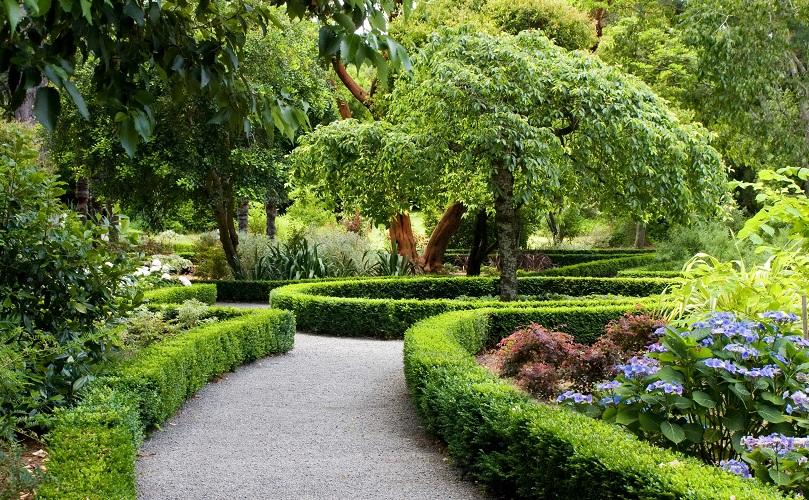 احداث گلخانه با گنجایش یکصدهزار قلم انواع درختچه