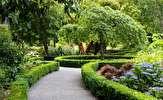 باشگاه خبرنگاران -احداث گلخانه با گنجایش یکصدهزار قلم انواع درختچه