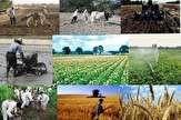 باشگاه خبرنگاران -گسترش کارگاههای آموزشی کشاورزی و آبزیپروری در بوشهر