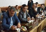 کاشت 7 هزار نهال در شهرستان سردشت