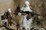 تلفات سنگین طالبان در ولایت پکتیا