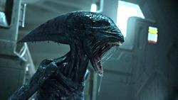 حقایقی شگفتانگیز درباره موجودات فضایی که شاید در اطراف ما باشند!
