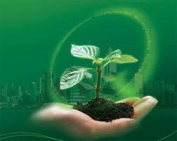 مدیریت سبز نگرشی در حکمرانی توسعه پایدار است