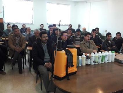 باشگاه خبرنگاران -برگزاری کارگاه آموزشی مبارزه با علف های هرز در گندم زارهای رامشیر