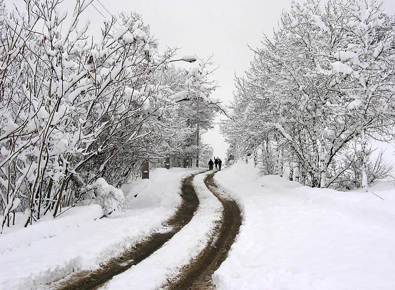 زمستان به شکل واقعی در اردبیل رخنمایی میکند/ پیشبینی دمای 20- درجه در اردبیل