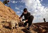 باشگاه خبرنگاران -کشف چندین گور متعلق به تروریستهای داعش در استان دیاله عراق