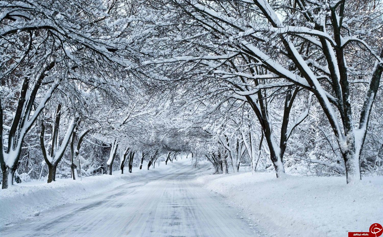رازهایی حیرت انگیز درباره دانههای بلورین برف