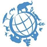 باشگاه خبرنگاران -یک گونه از حیات وحش در هر 20 تا 30 دقیقه در معرض خطر انقراض قرار میگیرد