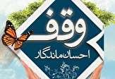 ثبت وقف مشارکتی با سهم بیمه عمر درشهرستان بافت
