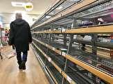 نا امیدی مردم انگلیس از خالی شدن فروشگاهها و کمبود نان در این کشور+ تصاویر