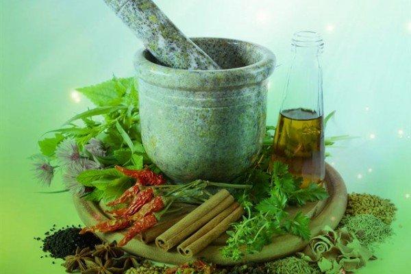 محصولات گیاهی «شرکت بادران گستران» غیر مجاز هستند
