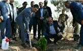 باشگاه خبرنگاران -سفراستاندارمرکزی به محلات و کاشت نمادین درخت