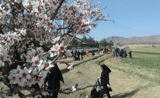عکس ها پاکسازی طبیعت در طرح استقبال از بهار