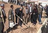 باشگاه خبرنگاران -غرس چندصد نهال در مهاباد در پنجمین روز هفته منابع طبیعی