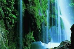 تنها آبشار خزهای جهان در بهشت جنگلهای گلستان