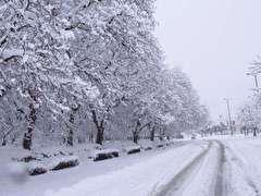 باشگاه خبرنگاران -آخر هفته ای همراه با برف در همدان