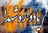 شاهچراغ (ع) میزبان یادواره شهدای مدافع حرم و امنیت فارس