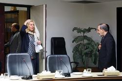 دیدار وزرای امور خارجه هلند و اسپانیا با علی اکبر ولایتی