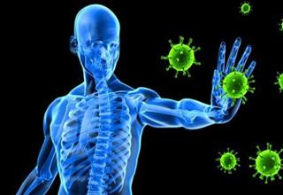 میوهای که بدن شما را مقابل ویروسها ایمن میکند