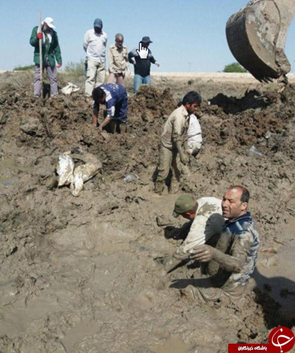 تصویری از سختی های عملیات تفحص پیکرهای مطهر شهدا