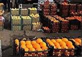 باشگاه خبرنگاران -توزیع میوه در 25 نقطه از شهرستان اردبیل