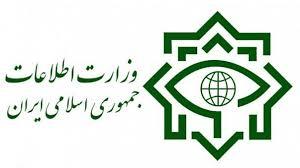 وزارت اطلاعات انتصاب افراد دو تابعیتی در پستهای مدیریتی را تکذیب کرد