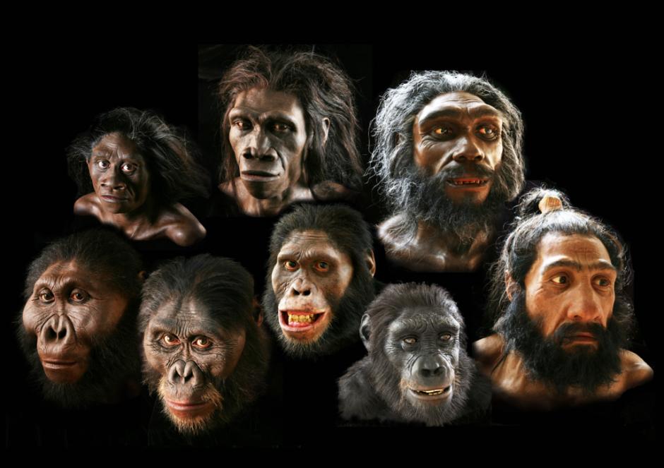 ردپای انسان های نخستین در اثری ۱۴۹ هزار ساله در کوهدشت لرستان + تصاویر