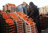 باشگاه خبرنگاران -توزیع میوه عیدانه در استان سمنان آغاز شد