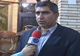 باشگاه خبرنگاران -آلودگی هوا در استان لرستان