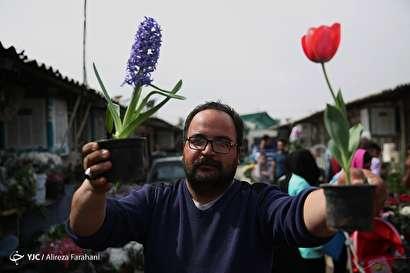 بازار گل و گیاه در آستانه نوروز