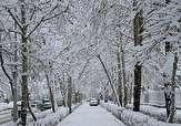 باشگاه خبرنگاران -بارش برف در آستانه عید نوروز در اردبیل