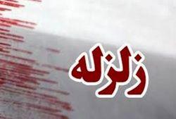زمین لرزه ۵ ریشتری بوشهر را لرزاند/ زلزله هیچ خسارت مالی و جانی نداشته است