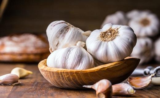 گیاهان، سپری قوی در برابر مسمومیتها/ مسمومیت را با مواد غذایی طبیعی ریشهکن کنید