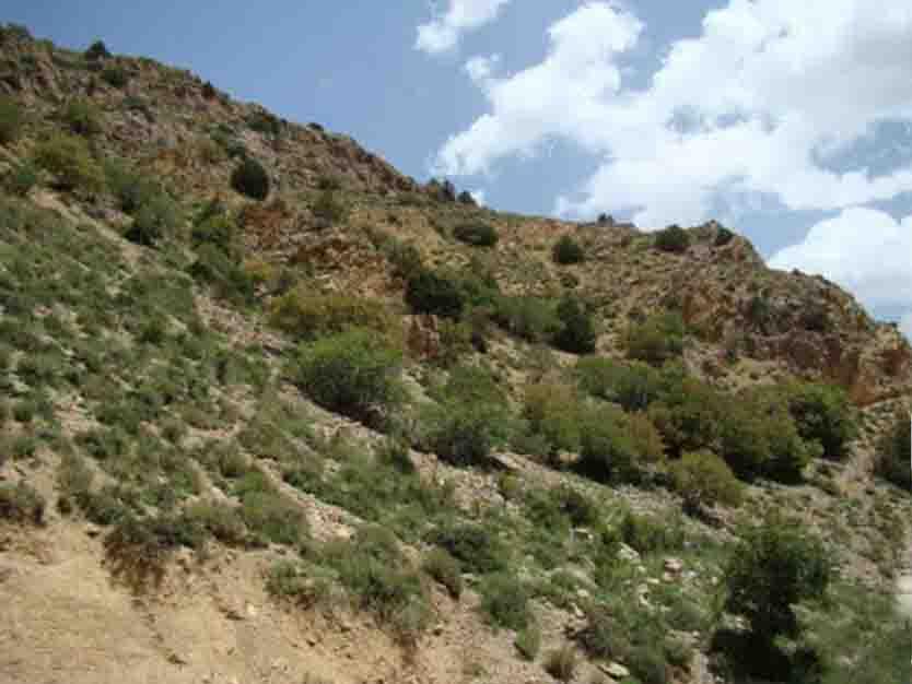 باجگیران؛ نقطه صفر مرزی ایران و ترکمنستان(ویژه نوروز)