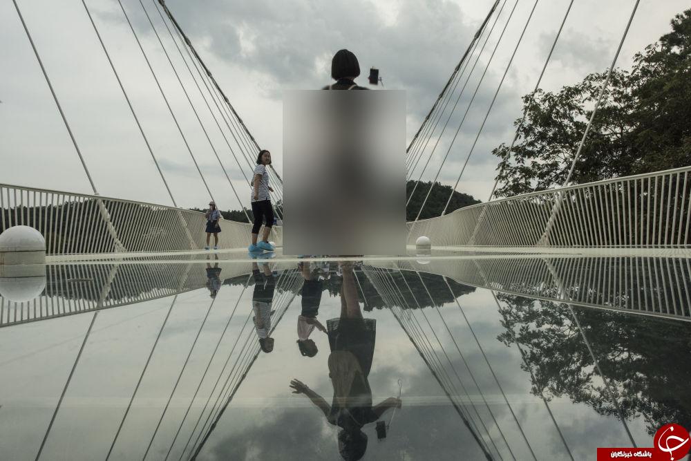 متفاوتترین پلهایی که تاکنون دیده اید!+تصاویر