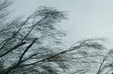 باشگاه خبرنگاران -پیش بینی وزش باد و بارش برف و باران