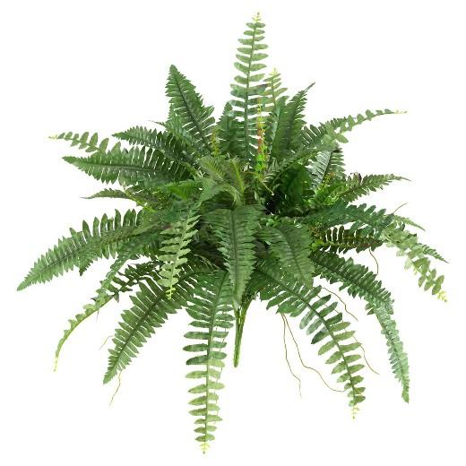 گیاهان یکی از منابع رفع آلودگی در محیط هستند