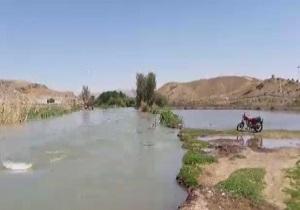 سریز شدن آب در حاشیه رودخانه زاینده رود + فیلم