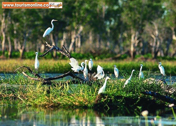 این پارک ملی، جذاب ترین مقصد توریستی دنیاست! +تصاویر