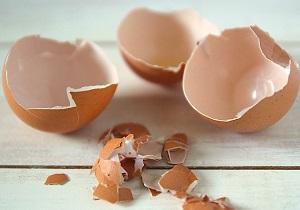 پوست تخم مرغ، چه فوايدي دارد