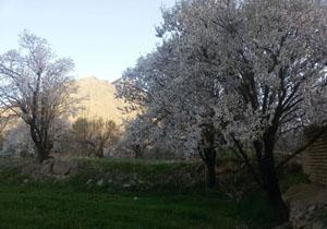 تصاویری از طبیعت زیبای «گلپایگان»