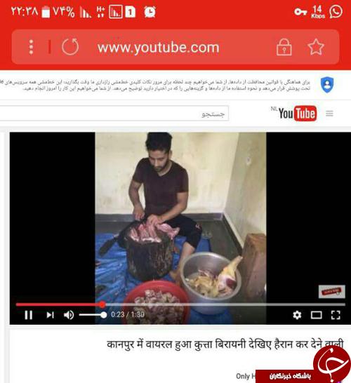 خوردن گوشت سگ در لشکرآباد شایعه یا واقعیت؟+تصاویر
