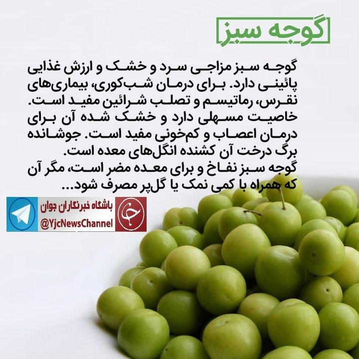 خواص درمانی گوجه سبز یکی از میوههای فصل بهار+اینفوگرافی