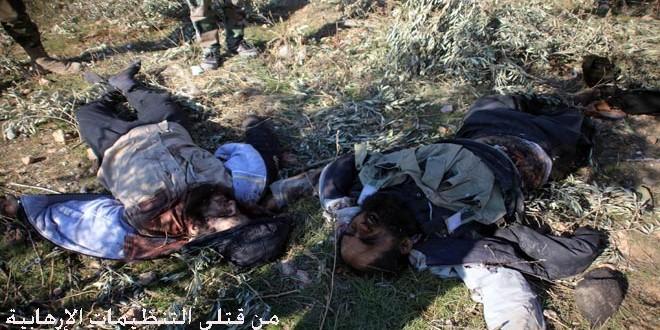 بشکههای انفجاری بلای جان داعشیها +فیلم
