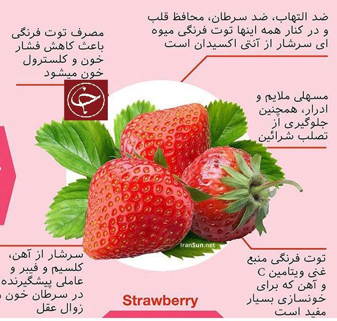 خواص میوه تابستانی توت فرنگی/  کاهش فشار و کلسترول خون می شود.