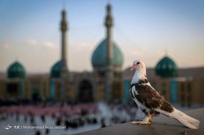 مسجد مقدس جمکران در آستانه نیمه شعبان