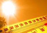 این ضد آفتابهای طبيعی و خوراكی را حتما استفاده کنید+ اسامی