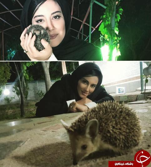 آشا محرابی و حیوان خانگی عجیب اش! +عکس