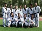 باشگاه خبرنگاران -ترکیب تیم تکواندو مردان اعزامی به بازیهای کشورهای اسلامی مشخص شد